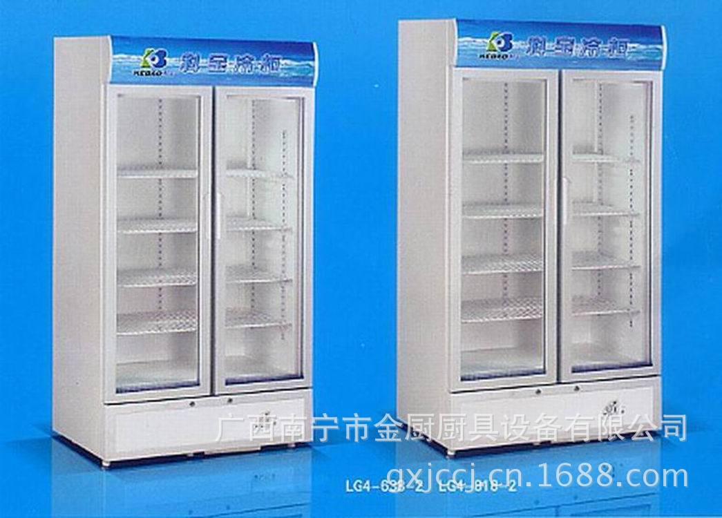 双门立式直冷展示柜